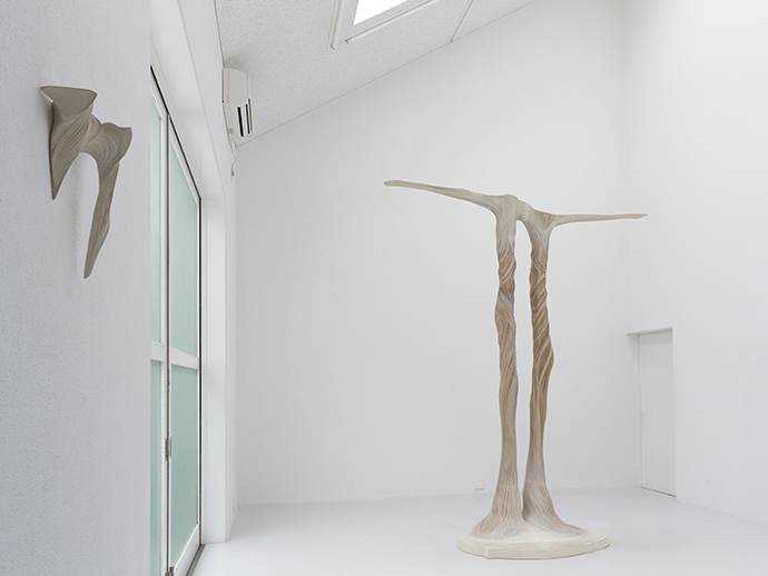 「ふたつの遠い滝」展示風景 2013
