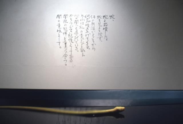 真空ー横切るもの 1997 シリコン、水、モーター、樹脂、板、顔料 h65×w120(30)×d665cm