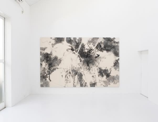 untitled 2017 綿布、木炭、墨 h227xw364cm