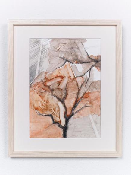 景色・木2 2017 紙、水彩、鉛筆 h32.5xw23cm