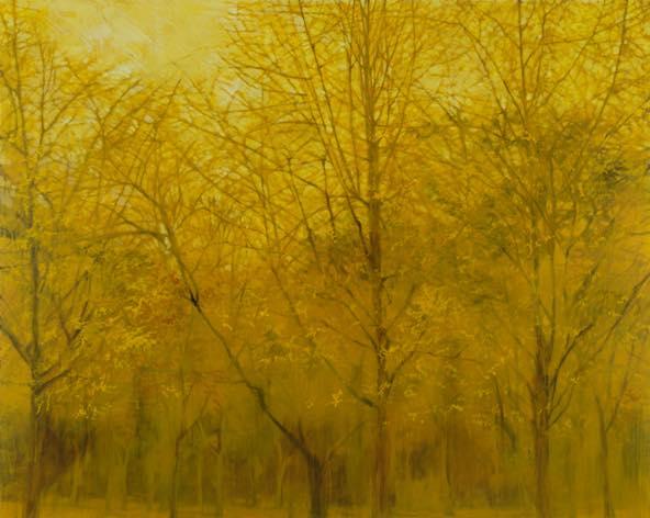 深韻ー風の棲処(銀杏)十三 2012 oil on canvas h181.8×w227.3cm