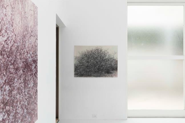 asile-white splash Ⅰ 2020 紙、樹脂絵の具、木炭 1780 x1070mm 撮影 中川周