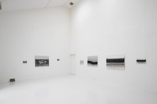2019 アスファルトの地面の下・コンクリートの壁の向こう ー灰色の風景をやわらかくするー 展示風景