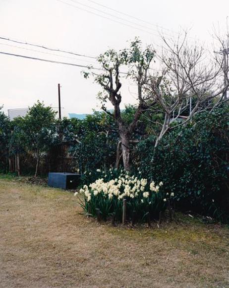 彫刻の庭 2009 タイプCプリント ed.10_h61×w50.8cm
