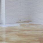 「池内晶子×鵜飼美紀 IKEUCHI_Akiko × UKAI Miki」2011