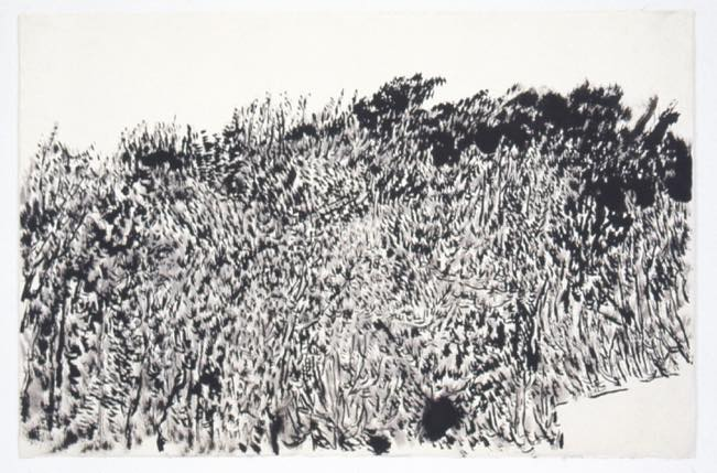 2000-2002 Study of the mountain in front 韓紙、墨 h80×w124cm